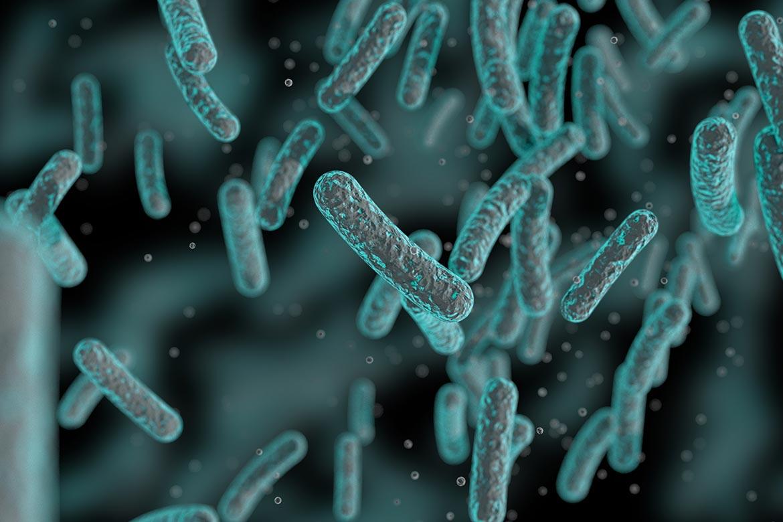 differenze-probiotici-prebiotici