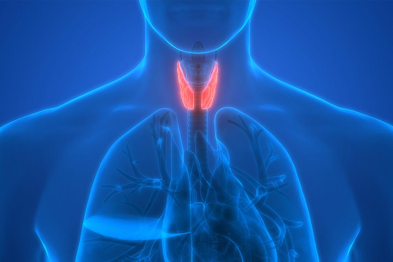 ipotiroidismo-colesterolo